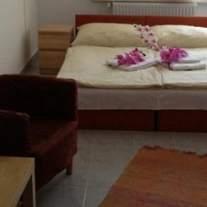 ホステル - Hotel Timon