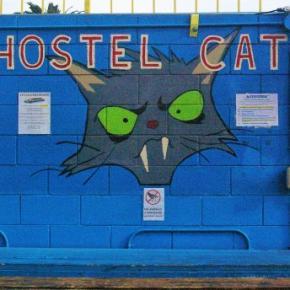 ホステル - Hostel Cat