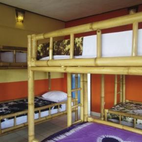 ホステル - Detri Ubud Hostel