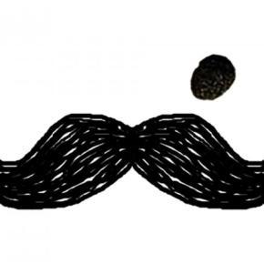 ホステル - Moustache Hostel Jaipur