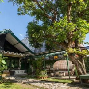 ホステル - Mango Tree Dipudjo Homestay