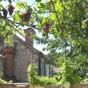 ホステル - Hostel Split Garden